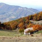 Ferme de la Lance, Col de Béconne au fond
